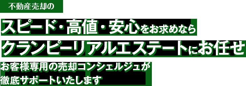 fvMain__item1