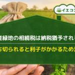 生産緑地 相続税 納税猶予